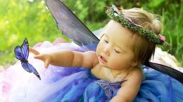 mirabel-butterfly
