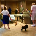 Go, Dogs Go, to a Resort Hotel!
